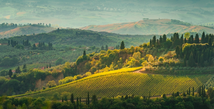 4 Things Not to Miss During Your Tuscan Vacation